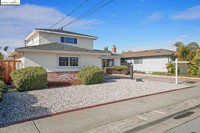 San Leandro Single Family Home New: 14283 Tiburon Rd