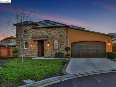 Brentwood Single Family Home New: 1768 Merlot Cir
