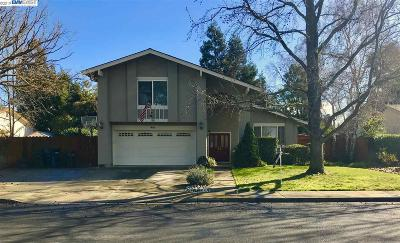 Livermore Single Family Home New: 650 Shelley St