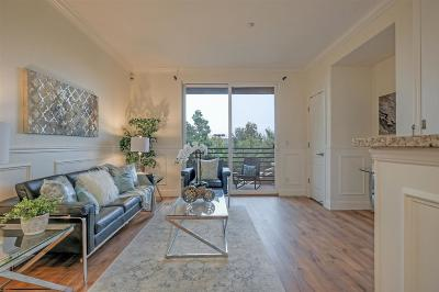 Oakland Condo/Townhouse New: 10871 Packard #161