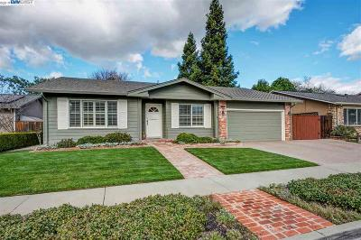 Pleasanton Single Family Home New: 5245 Northway Road