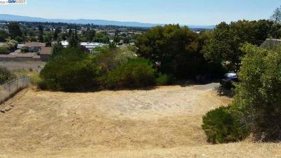 San Leandro Residential Lots & Land New: 16222 Lindview Dr