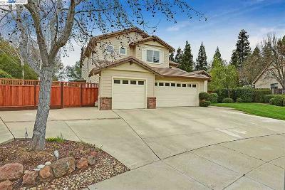 Livermore Single Family Home New: 1423 Joy Ct