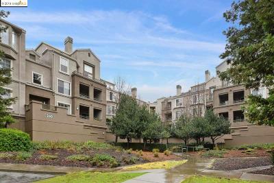 Oakland Condo/Townhouse For Sale: 260 Caldecott Ln. #207