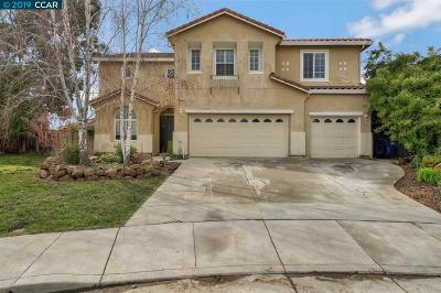 Antioch Single Family Home New: 2462 Vallecito Ct