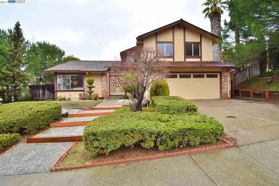 Castro Valley Single Family Home For Sale: 5478 Balkan Ct