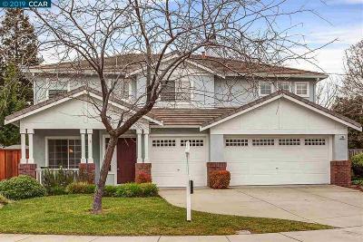 Martinez Single Family Home New: 284 Crestview Ave