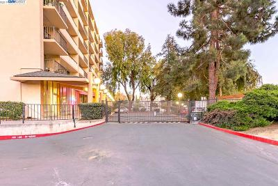 Fremont, Newark, Union City Condo/Townhouse New: 3909 Stevenson Blvd #405