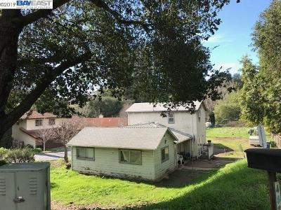 Castro Valley Single Family Home New: 4874 Crow Canyon Rd