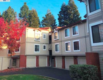 Pleasanton Condo/Townhouse New: 3458 Smoketree Commons Dr
