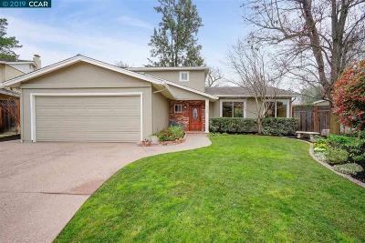 Pleasanton Single Family Home New: 2172 Camino Brazos