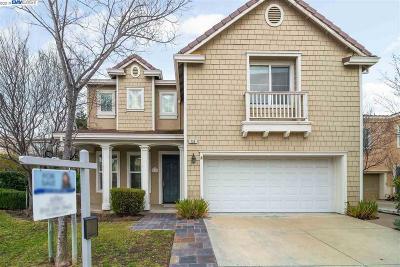 San Ramon Single Family Home New: 730 Birdwood Ct