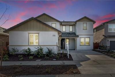 Stanislaus County, San Joaquin County Single Family Home New: 1784 Water Lily Ct