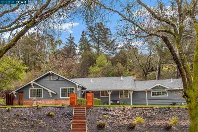 Orinda Single Family Home New: 4 Muth Dr