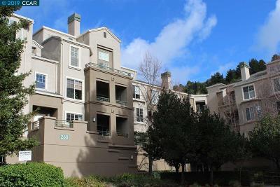 Oakland Condo/Townhouse New: 260 Caldecott Ln #112