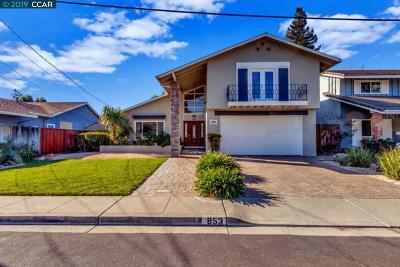 Concord Single Family Home New: 853 Sullivan Ave