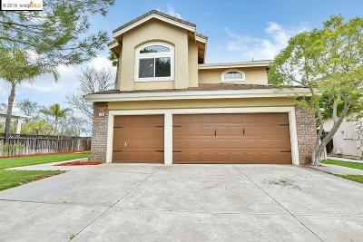 Discovery Bay Single Family Home New: 2283 Tamarisk Ct.