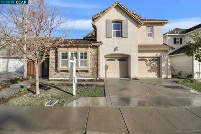 San Ramon Single Family Home New: 232 Cullens Ct