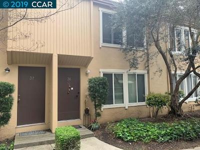 Concord Condo/Townhouse New: 3055 Treat Blvd #36