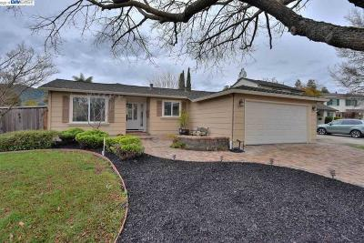 Alameda County, Contra Costa County Single Family Home New: 3902 Mount McKinley Court