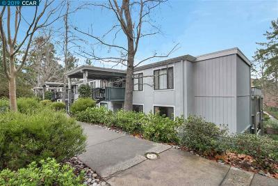 Walnut Creek CA Condo/Townhouse New: $388,000