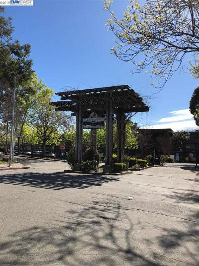 Alameda CA Condo/Townhouse New: $375,000