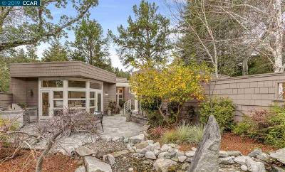 Orinda Single Family Home New: 8 Evergreen Drive
