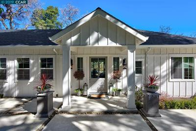 Walnut Creek Single Family Home New: 48 Terrace Road