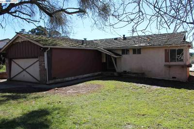 Castro Valley Single Family Home New: 4757 Rollinghills Way