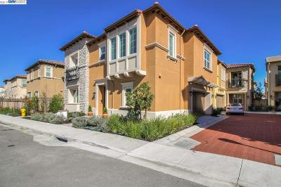 San Ramon Single Family Home For Sale: 339 Goldfield Pl