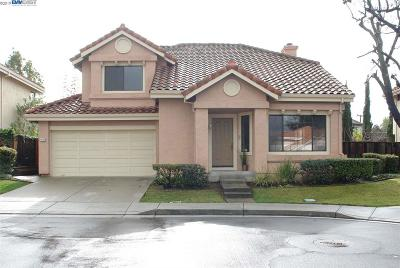 Fremont Single Family Home New: 43369 Livermore Cmn