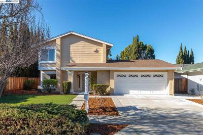 Fremont Single Family Home New: 4047 Polonius Circle