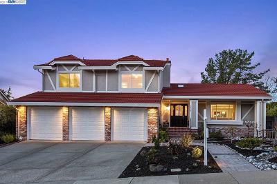 San Ramon Single Family Home New: 2930 Morgan Dr
