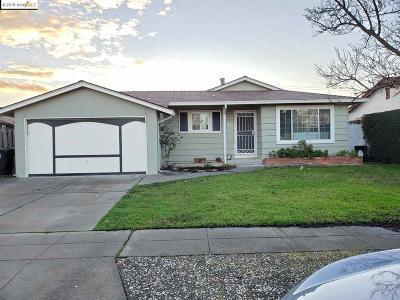 Fremont Single Family Home New: 5054 Brett Ct
