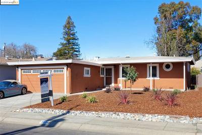 Concord Single Family Home New: 3131 Mount Diablo St