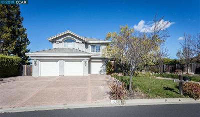 Pleasanton Single Family Home New-Reo: 1360 Hearst Drive