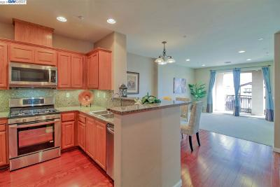 Dublin Condo/Townhouse New: 3240 Maguire Way #326