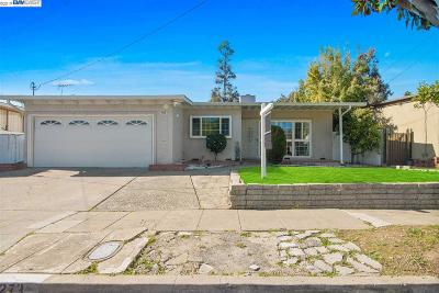 Hayward Single Family Home New: 24273 Willimet Way