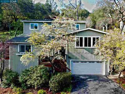 Orinda Single Family Home New: 7 El Toyonal