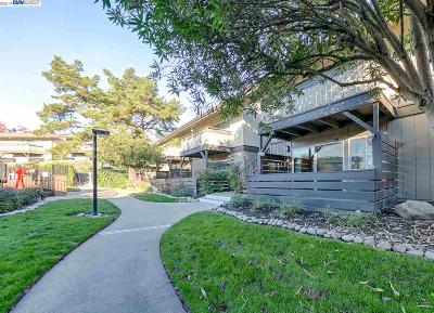 Walnut Creek CA Condo/Townhouse New: $409,000