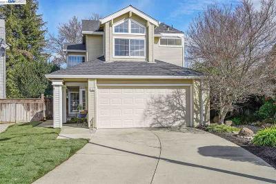 Pleasanton Single Family Home New: 4123 Lethram Ct