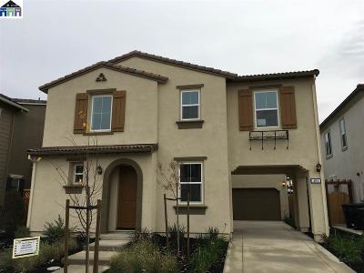 Mountain House Rental For Rent: 192 E Solare