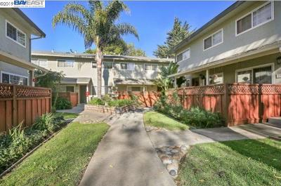 San Leandro Rental For Rent: 720 Fargo Ave #9