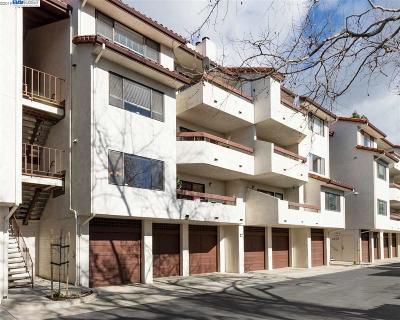 Hayward Condo/Townhouse New: 22103 Vista Del Plaza Ln #9