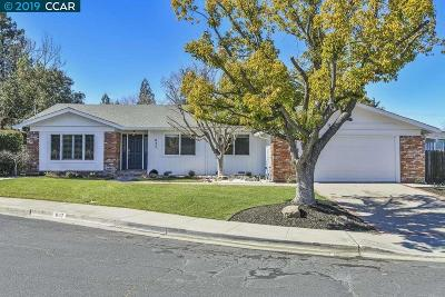 Walnut Creek Single Family Home New: 937 Quiet Place Ct