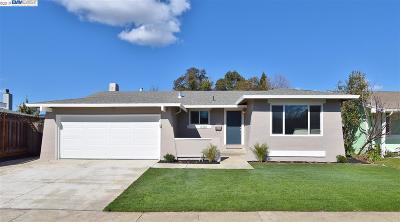 Pleasanton Single Family Home New: 6281 Guyson Ct