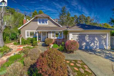 Marin County Single Family Home For Sale: 224 Blackstone Dr