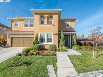 Mountain House Single Family Home For Sale: 695 N Plumas Dr