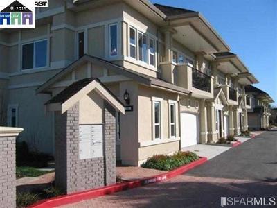 Hayward Condo/Townhouse New: 451 Laurel Avenue