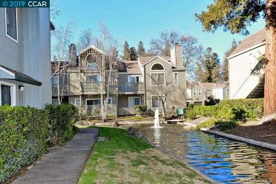 Pleasant Hill Condo/Townhouse Pending Show For Backups: 225 Sunspring Ct